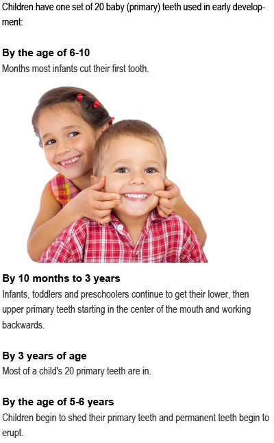 How many teeth do toddlers have