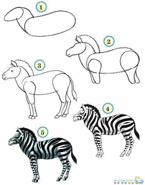 Drawing Simple Animal Zebra pics