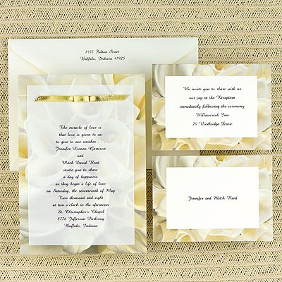 Orange wedding invitations Wedding invitation cost