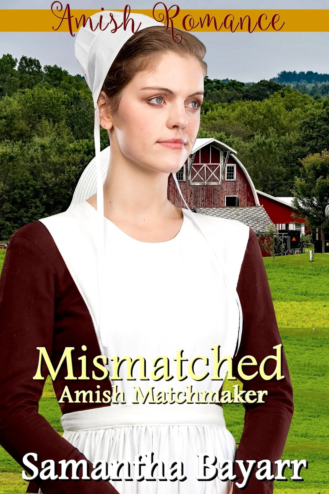 Mismatched: The Amish Matchmaker