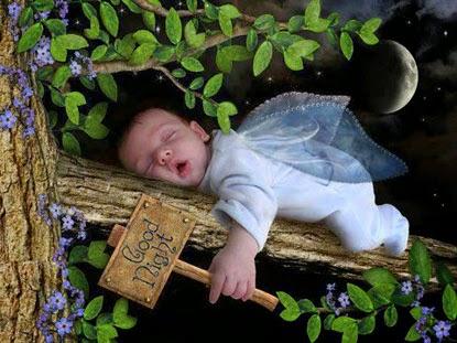 ảnh đẹp chúc ngủ ngon
