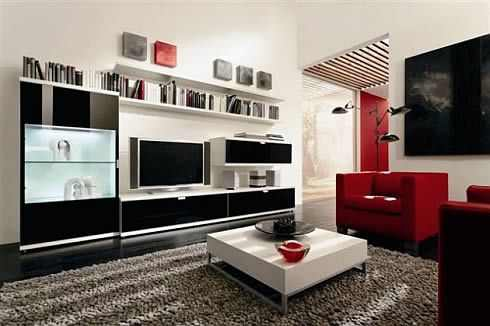 HouseInKerala.org: Showcase Design in Living Rooms