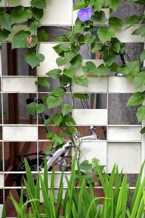 Rumah kiri-konsep-desain-bangunan-rumah-modern-fasad-putih-012