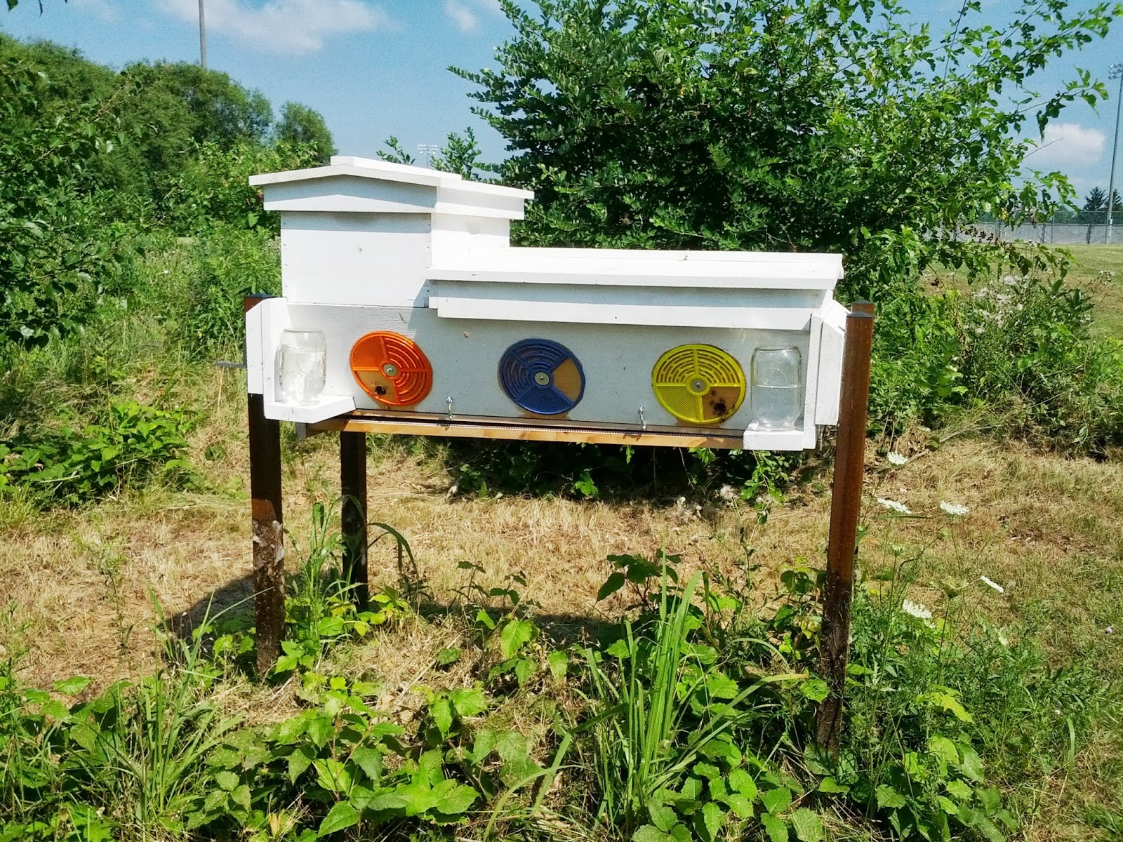 Genial This Is My Thomas Hybrid Hive. It Is Primarily A Top Bar Hive, But With The  Option Of Langstroth Frames In The Top Super. All The Wood It Is Made From  Has ...