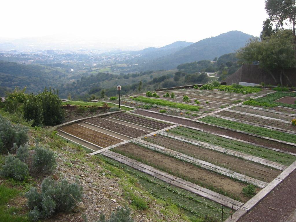 Jardinitis jard n en vallvidrera 2 - Disenador de jardines ...