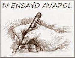 Ganador del IV Ensayo Político AVAPOL 2013
