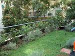 κηπος στην κυψελη