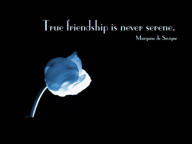 Famous Friendship Quote