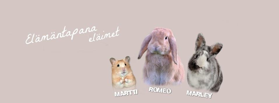 elämäntapana eläimet