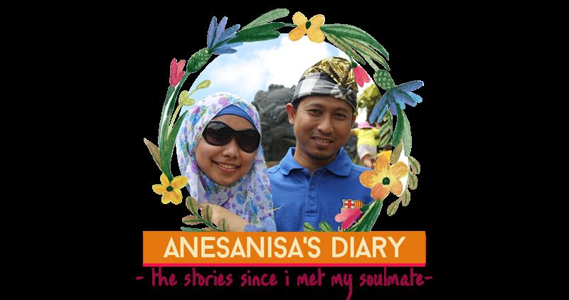 anesanisa's diary