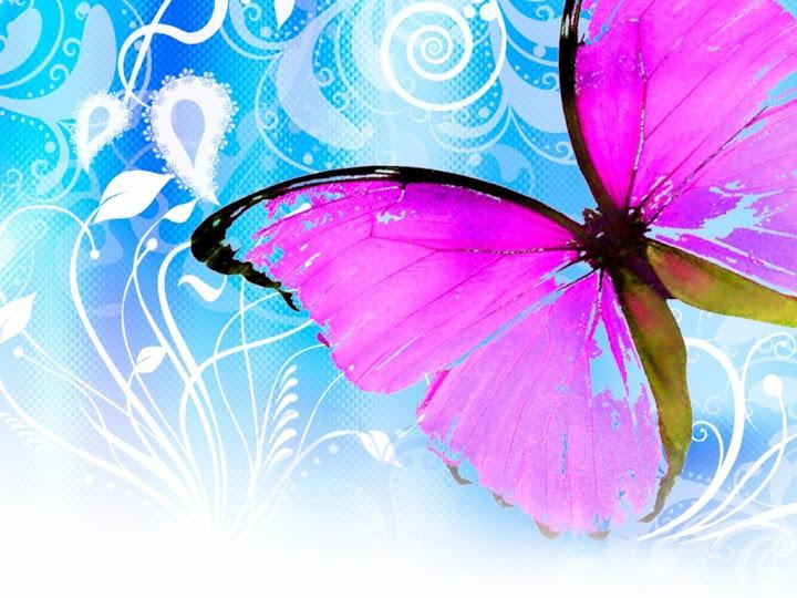 Cute butterfly wallpaper1