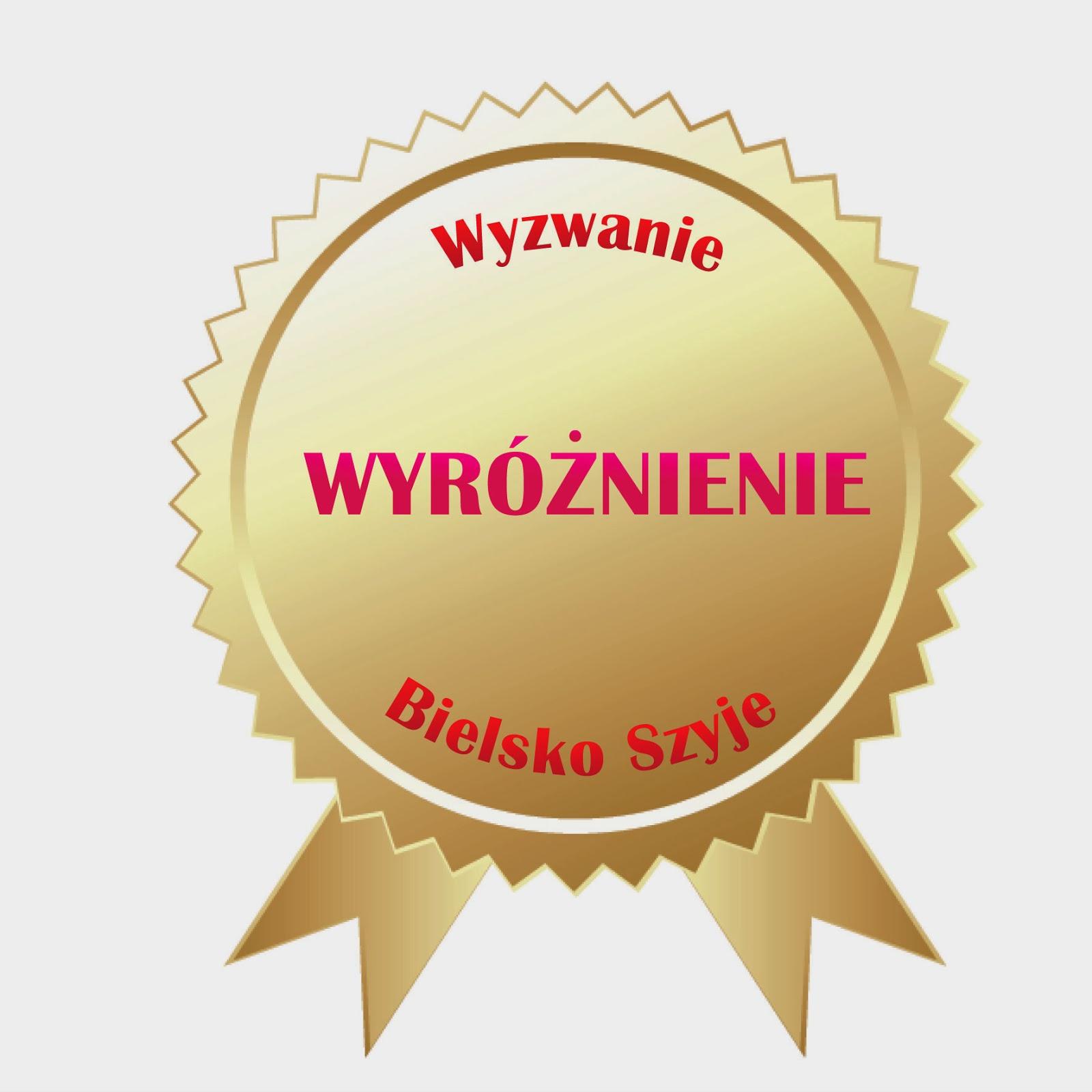"""Bielsko Szyje_Wyzwanie """"pokrowiec""""......PODSUMOWANIE"""