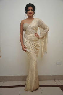 Vishakha Singh at rowdy fellow audio 045.jpg