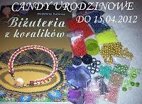 Candy w Pracowni Ewy