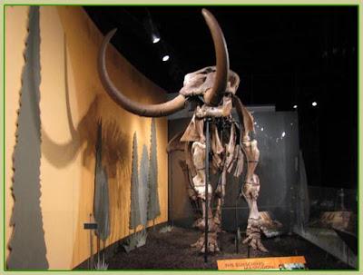 mastodon mastodont