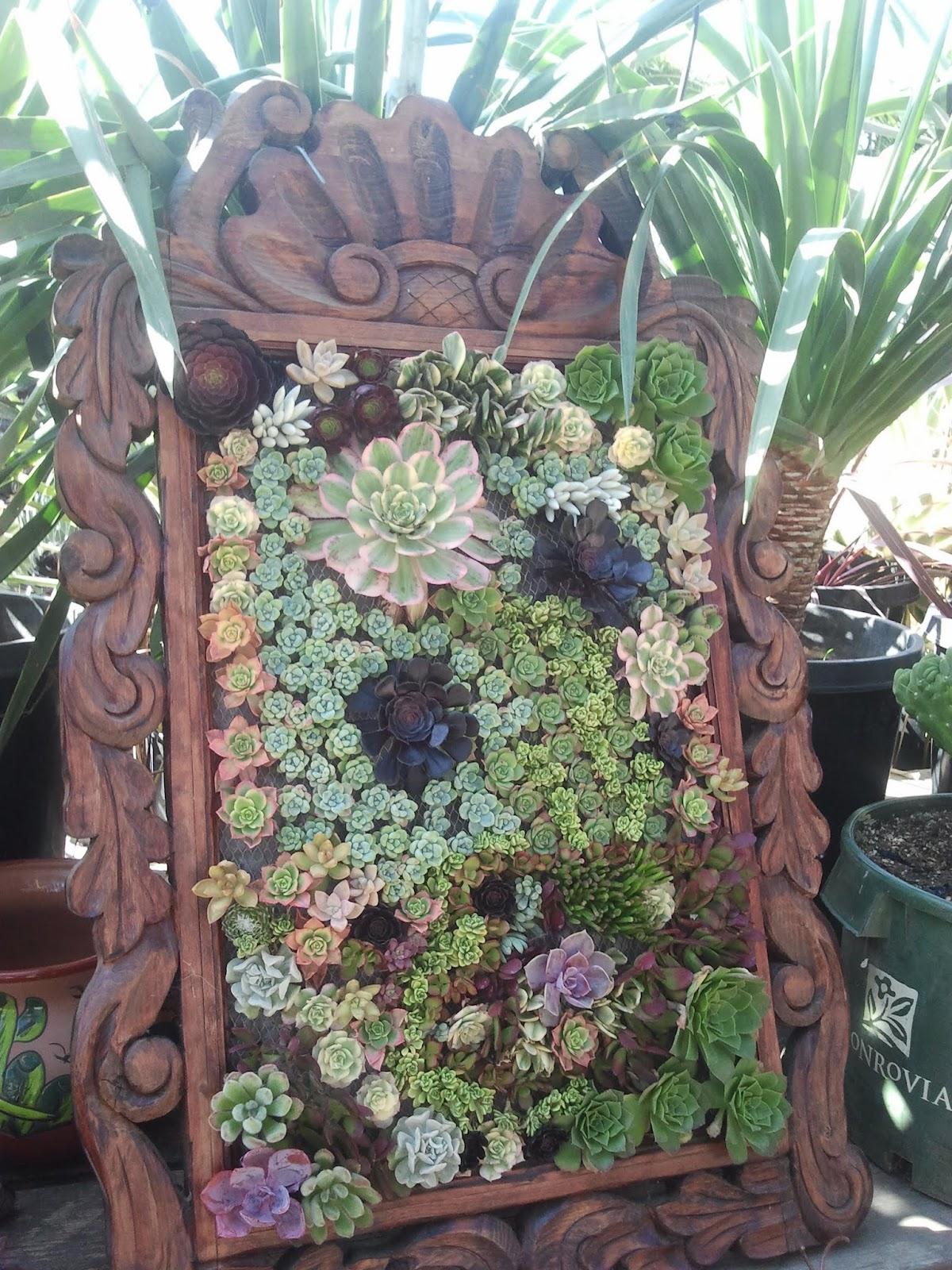 Living Wall Art Succulent Garden Design Ideas Modern