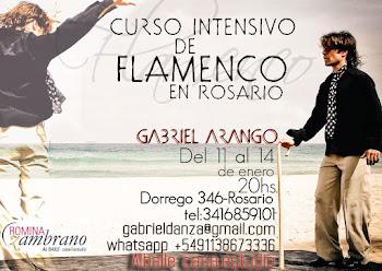 cursos de verano en Rosario