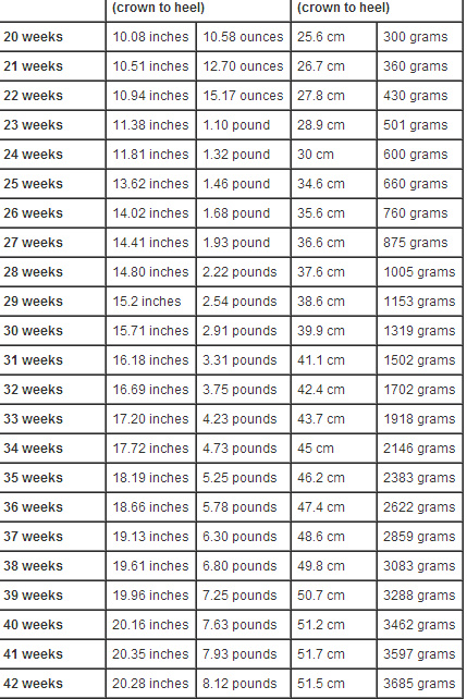Fetal Weight Chart