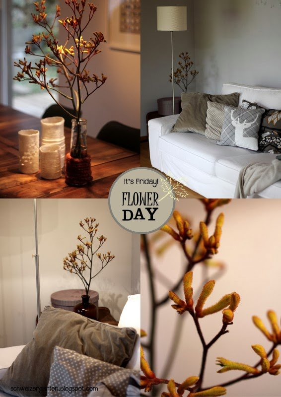 ein schweizer garten friday flowerday. Black Bedroom Furniture Sets. Home Design Ideas