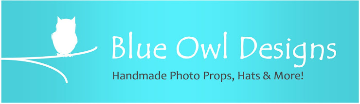 Blue Owl Designs