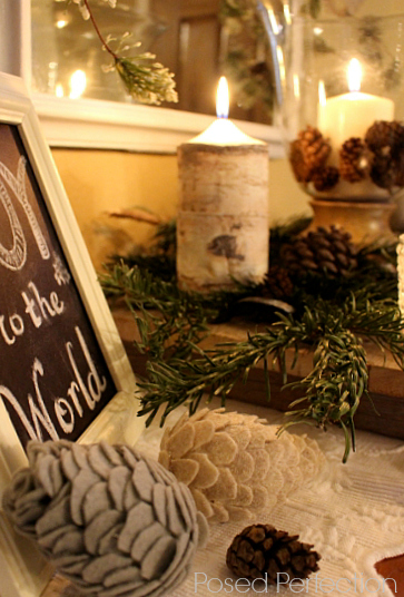 Snowy Entryway with felt pine cones and birch wood ribbon