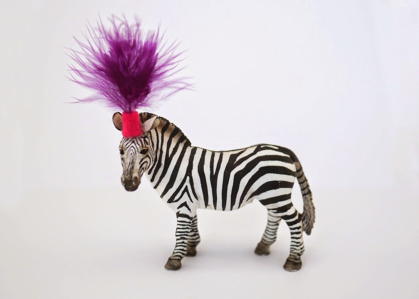zebra circus