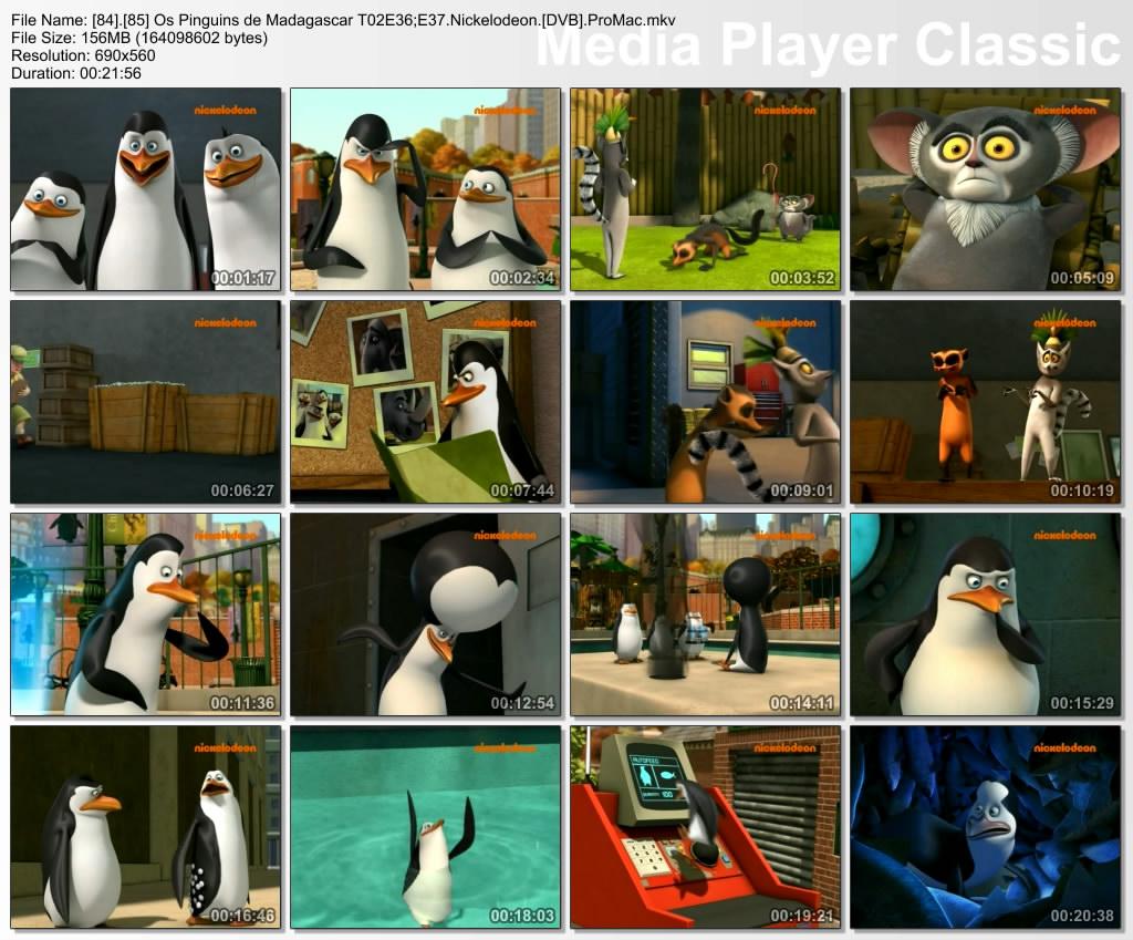 AnimesAnimadosPortugal: Os Pinguins De Madagascar [TVRip] [PT-PT]