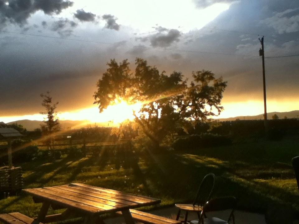 Gotta Love Montana Sunsets