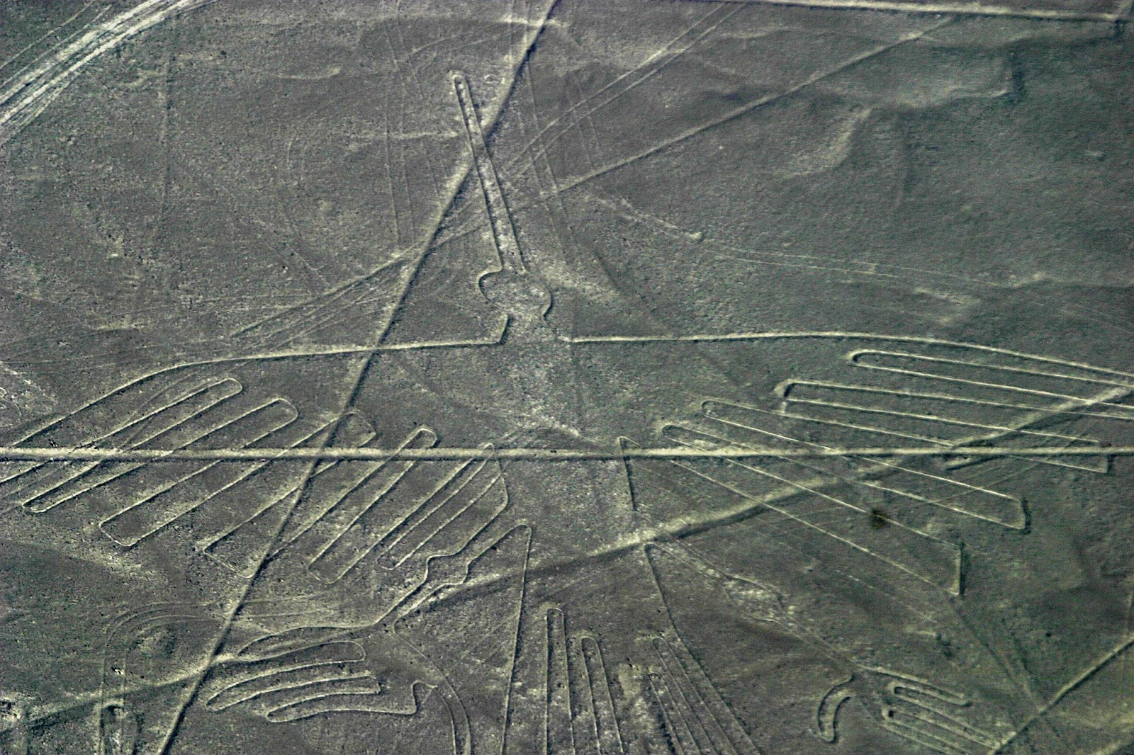 nazca lines The nazca lines /ˈnæzkɑː/ are a series of large ancient geoglyphs in the nazca desert, in southern peru the largest figures are up to 370 m (1,200 ft) long.