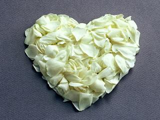 love bunga mawar putih