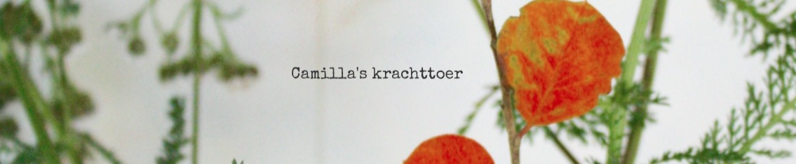 Camilla's krachttoer  -