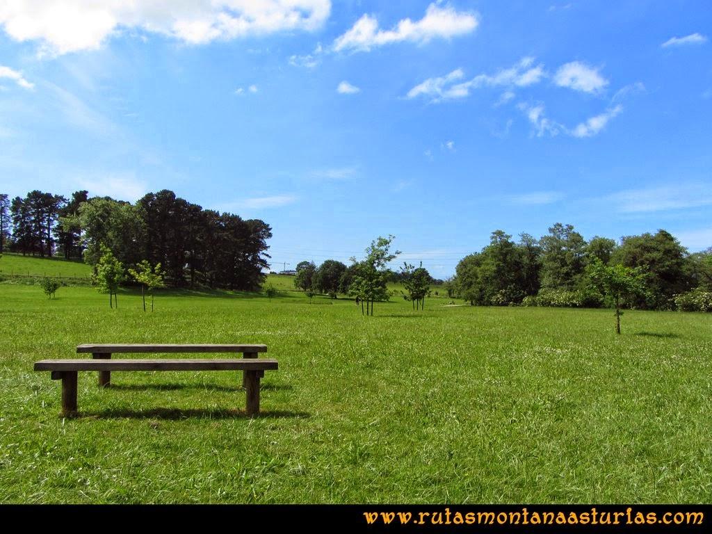 Senda Verde Camocha - Pico Sol - Piles: Área de la Carbayeda