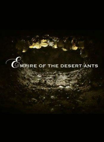 Đế Chế Của Loài Kiến Sa Mạc - Empire of the Desert Ants