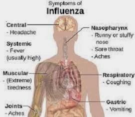 Ramuan tradisional (herbal) untuk mengatasi sakit pilek dan flu (influenza)
