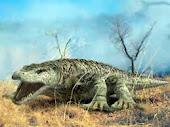 Megalania Prisca (giant monitor lizard)