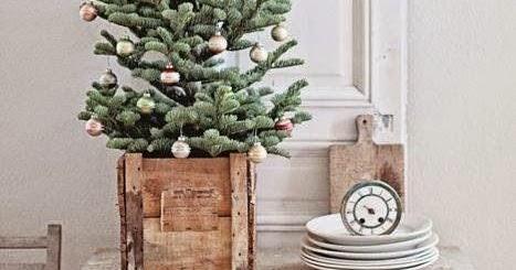 trendwelt weihnachtsbaum im topf oder korb. Black Bedroom Furniture Sets. Home Design Ideas