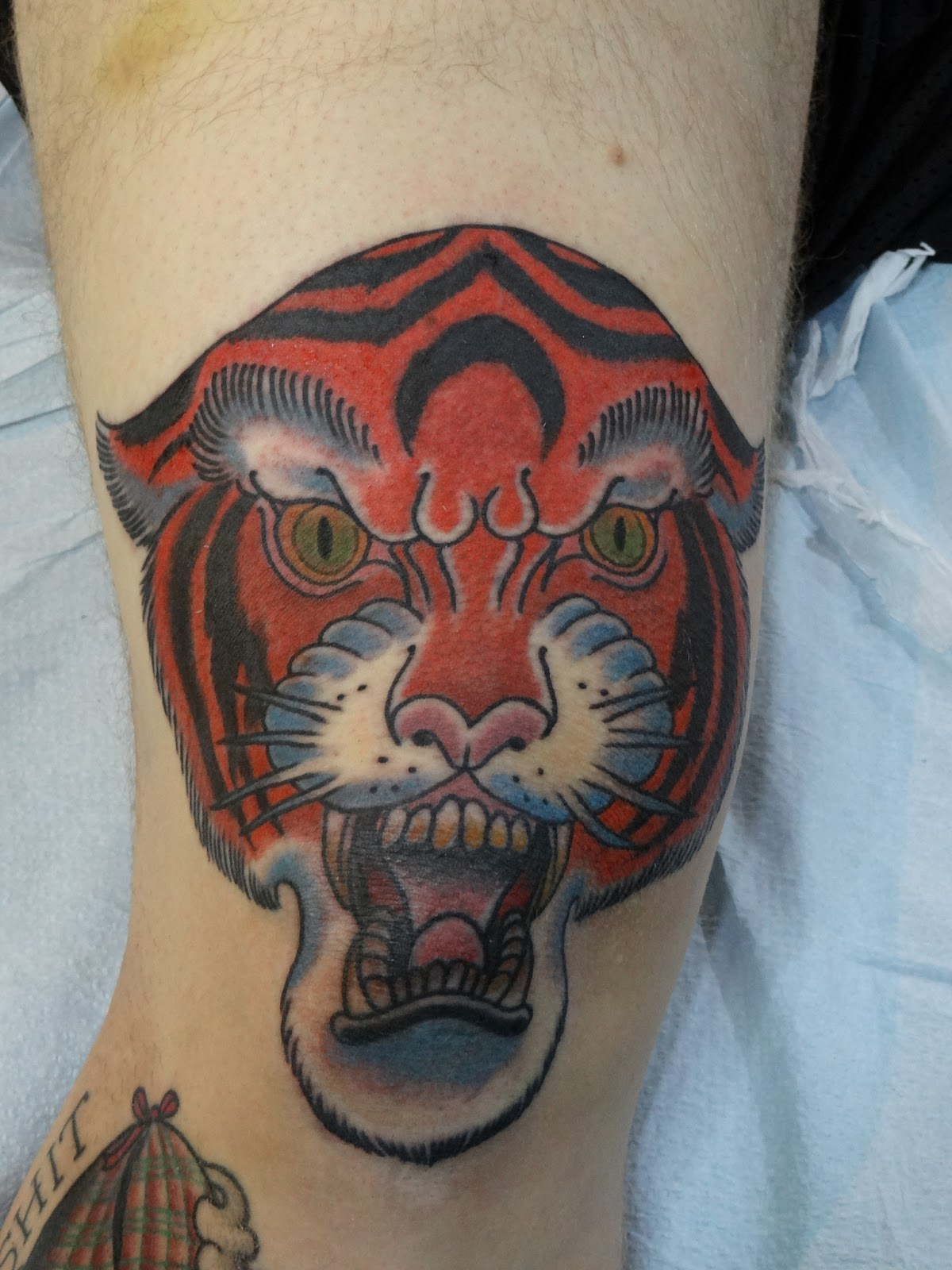 Tiger Knee Tattoo By Jared Green