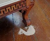 mengatasi serbuk rayap kayu di furniture