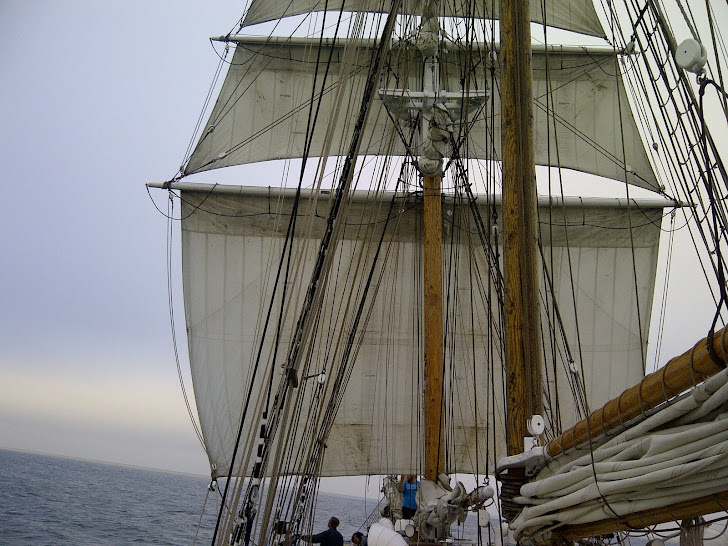 Tall Ship Sailing!