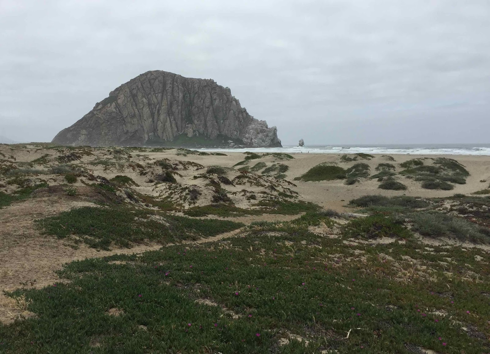 Travels with snoopy morro bay by the rock for Morro bay fishing