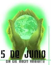 WED 2010, dia mundial del medioambiente