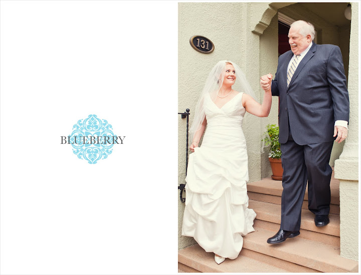 San Francisco bay area wedding photography session