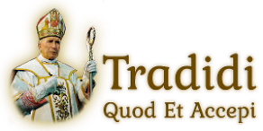 tradidi.com