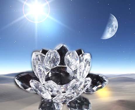 (Poesia) Flor de cristal