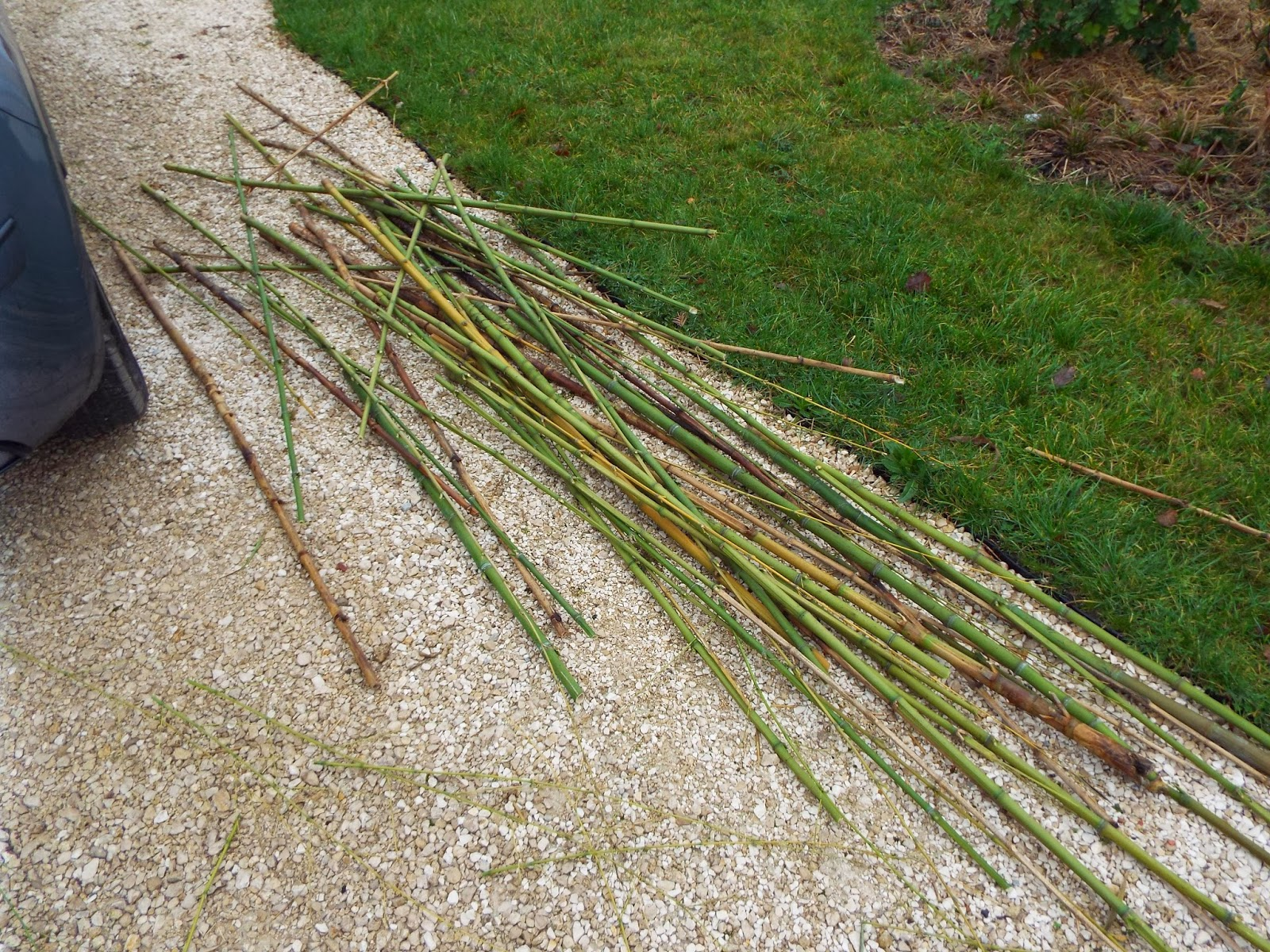 jardin aux quatre saisons r alisation d 39 une bordure plessis en bambou. Black Bedroom Furniture Sets. Home Design Ideas