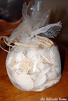 Bag Of Seashells1