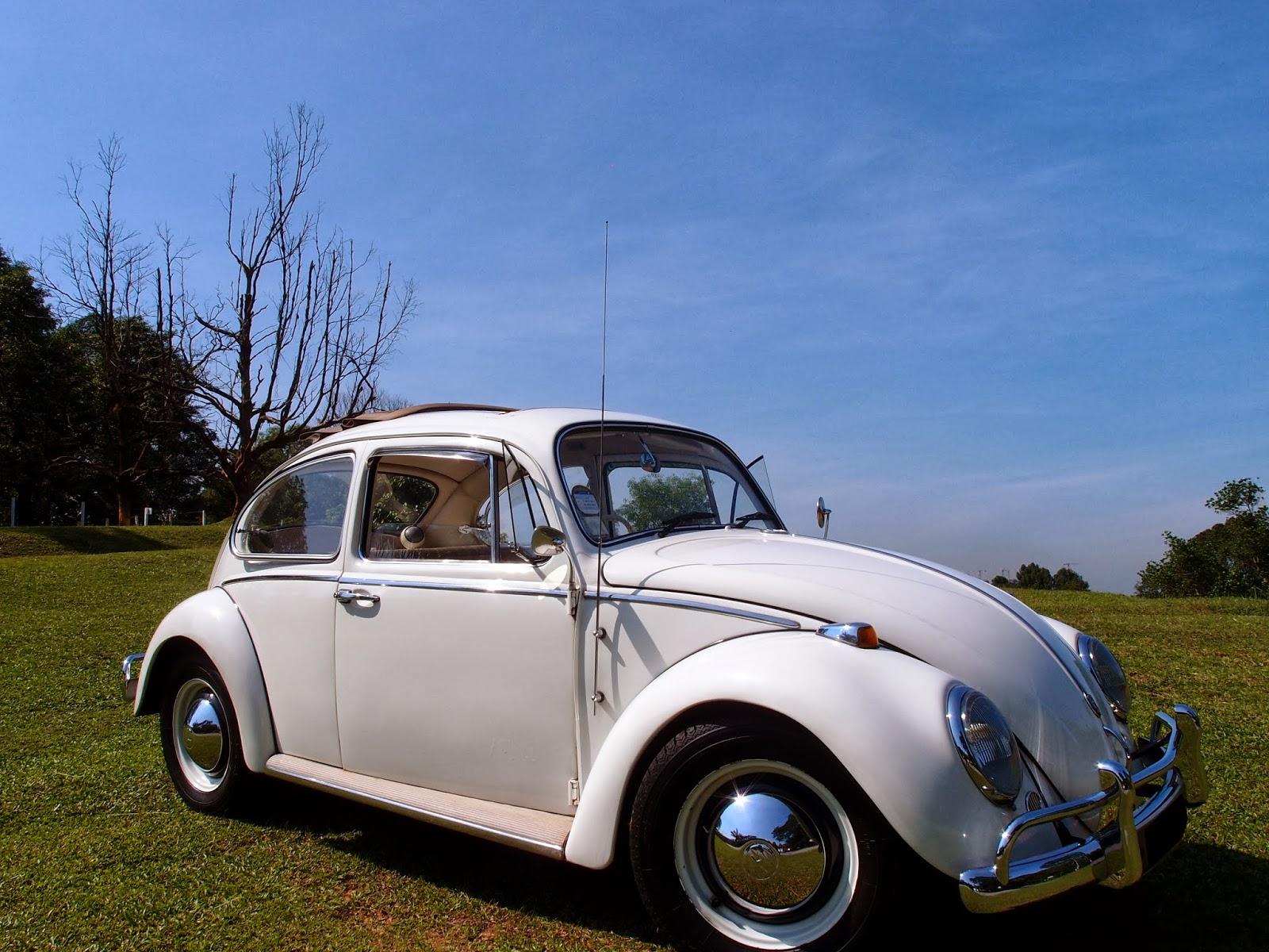 volkswagen vintage beetle whiteweddingcars