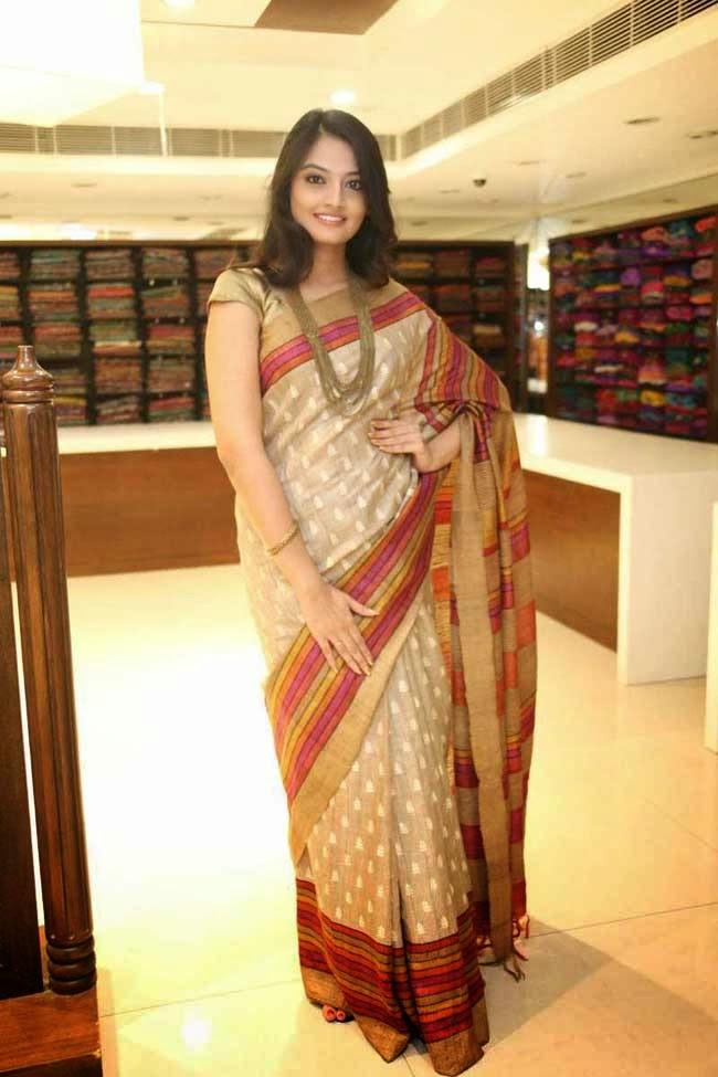 Nikitha Narayan In Saree