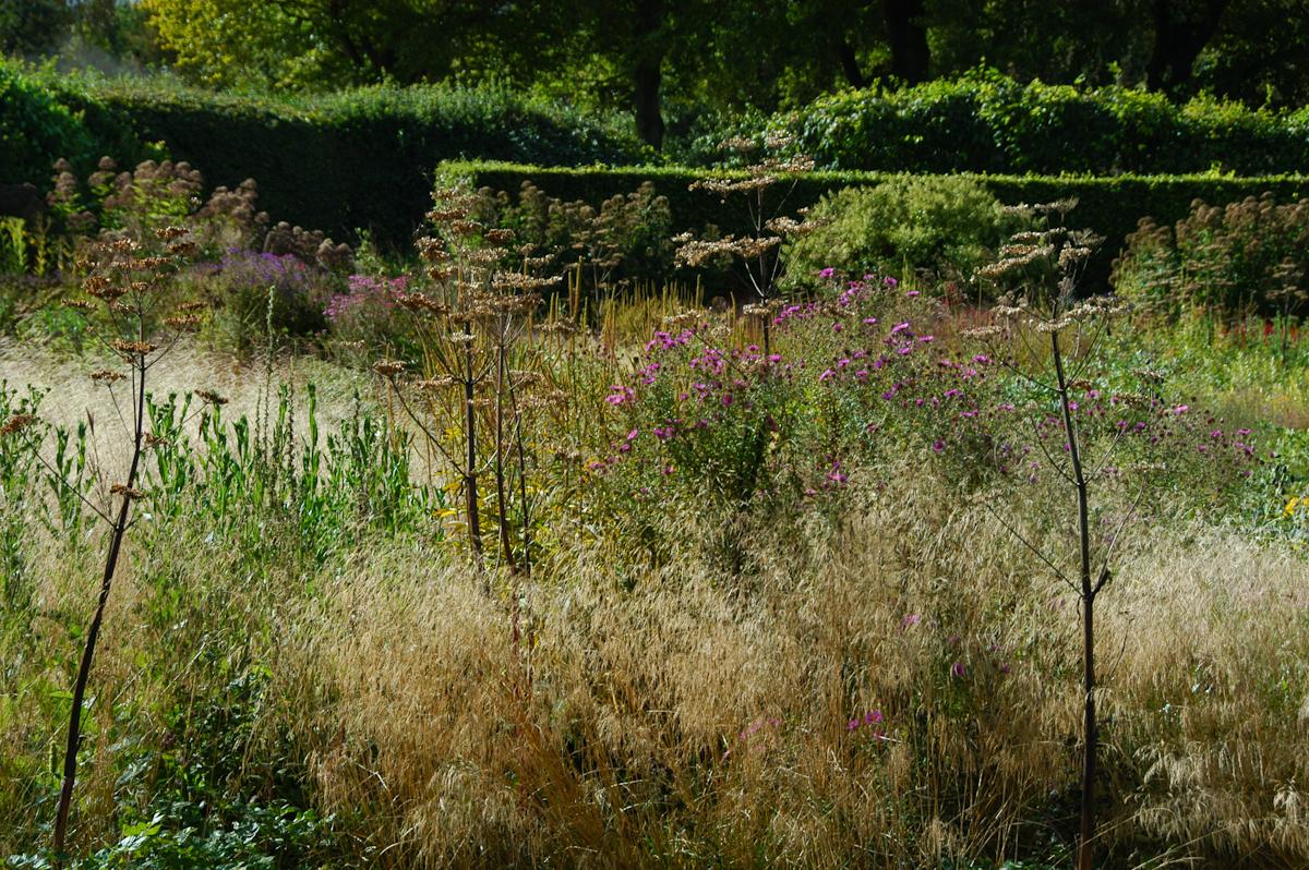 Natural gardening piet oudolf 39 s garden for Piet oudolf private garden