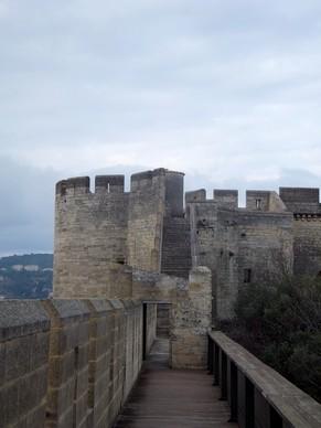 villeneuve lès avignon gard fort saint-andré
